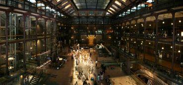 Le Muséum national d'histoire naturelle