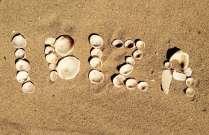 Los openings de Ibiza